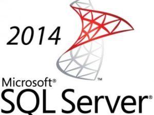 LICENCIA MICROSOFT SQL SERVER 2014 STANDARD